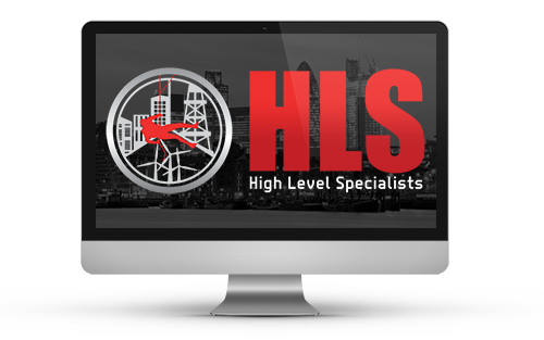 High Level Specialists - HLS Group - Contact Us